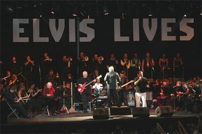 Elvis Lives In Belgium
