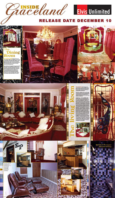 Preview Inside Graceland Book