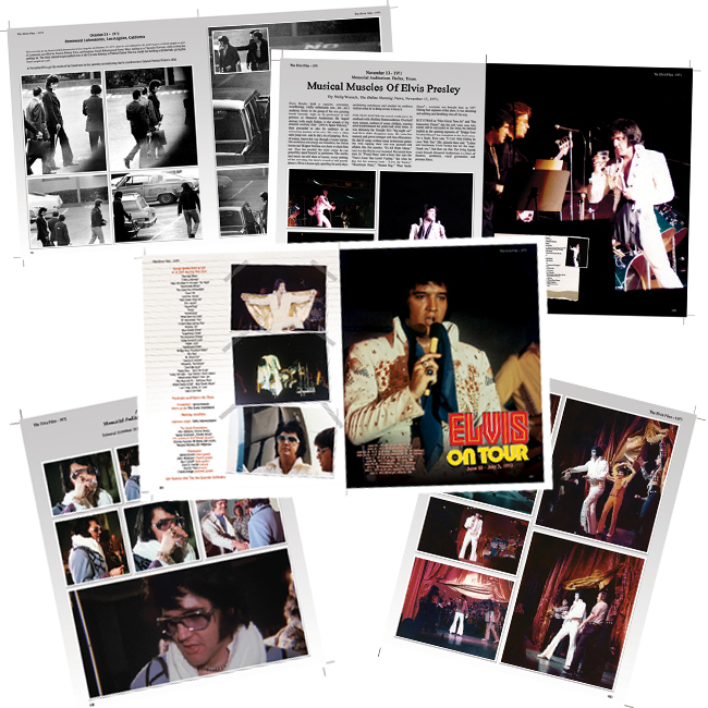 Pages Elvis Files 6