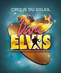 Various - VIVA Hits 16
